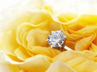 現金や宝石貴金属は引越し業者が運ぶことはできない。